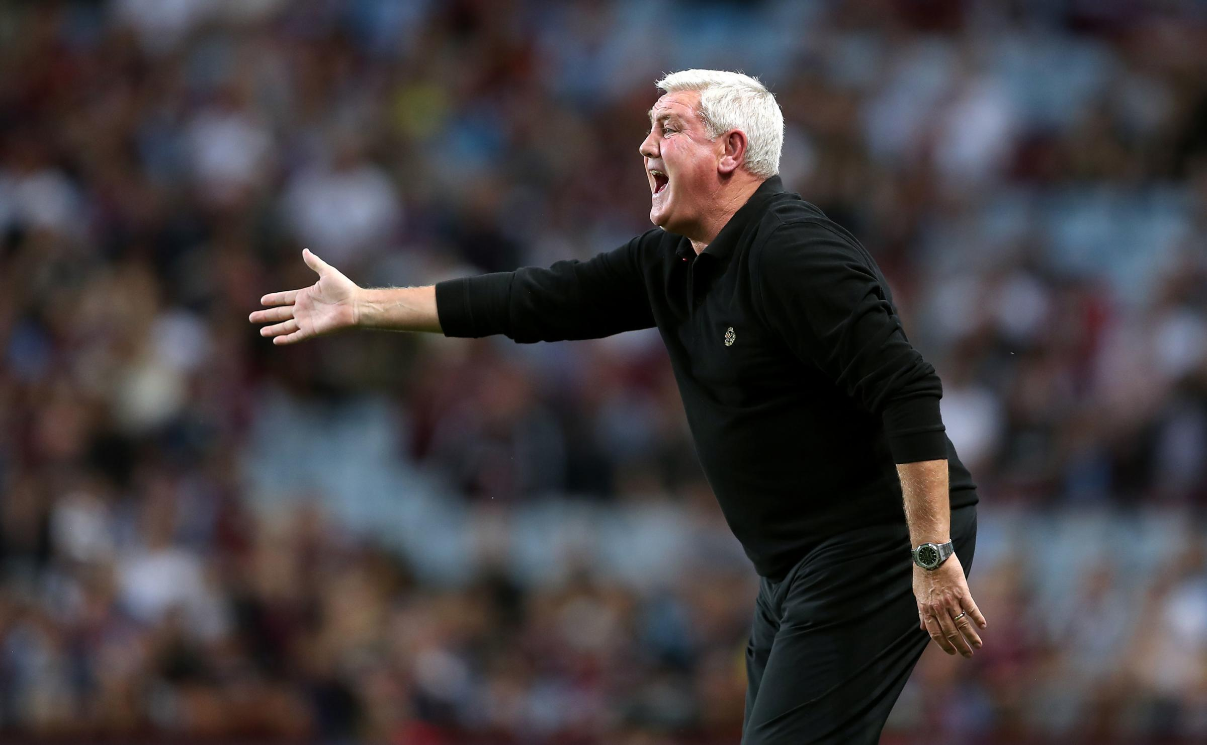 Steve Bruce insists he's not a puppet for Mike Ashley at Newcastle