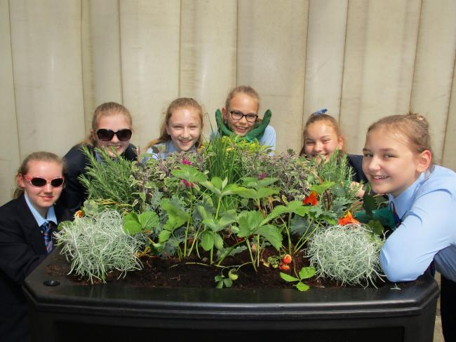 Pupils from six schools around Durham have been growing edible planters to help the city with its entry to Northumbria in Bloom