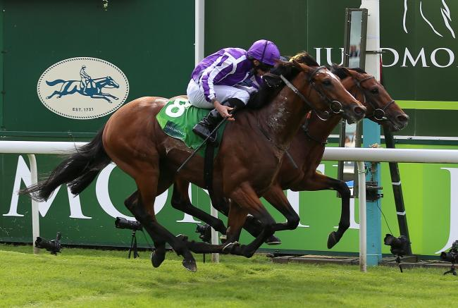 Japan (near side) ridden by Ryan Moore wins The Juddmonte International Stakes ahead of Crystal Ocean ridden by James Doyle in second during Juddmonte International Day of the Yorkshire Ebor Festival at York Racecourse. PRESS ASSOCIATION Photo. Picture da