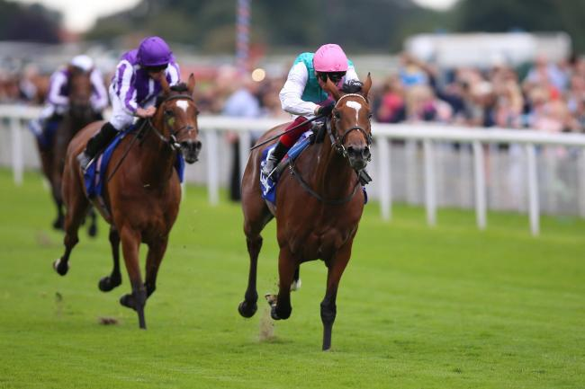 Enable ridden by Frankie Dettori wins The Darley Yorkshire Stakes