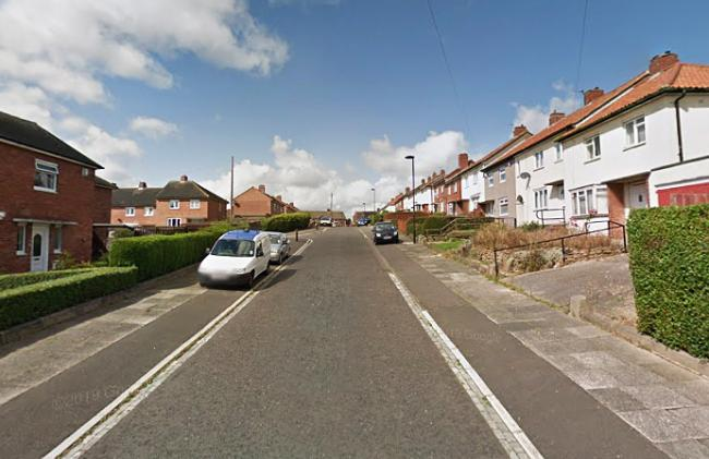 Ridsdale Avenue, in West Denton, Newcastle, where police received a report that a gun was fired. Picture: Google
