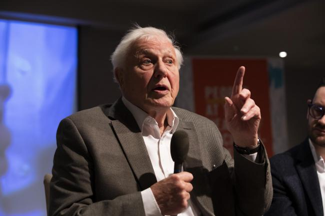 Covid: Attenborough gets jab months after warning people 'not to take eyes off climate'
