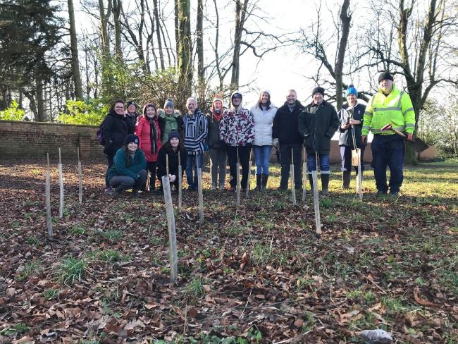 Darlington Tree Project's first planting event