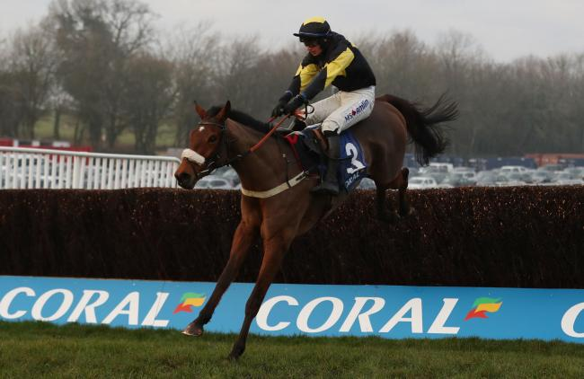 Former Welsh National winner Elegant Escape runs in the Grand National Trial ay Haydock today (3.15)