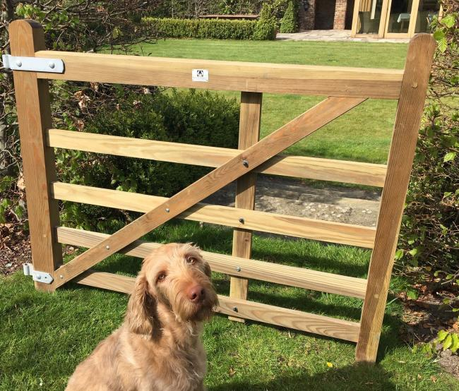 The Duncombe Sawmill gate which is being raffled, pictured with one of the Sawmill's dogs, Squash