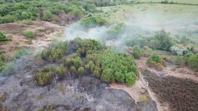 Firefighters were called to Waldridge Fell, near Chester-le-Street, at 8am on Friday to a moorland fire