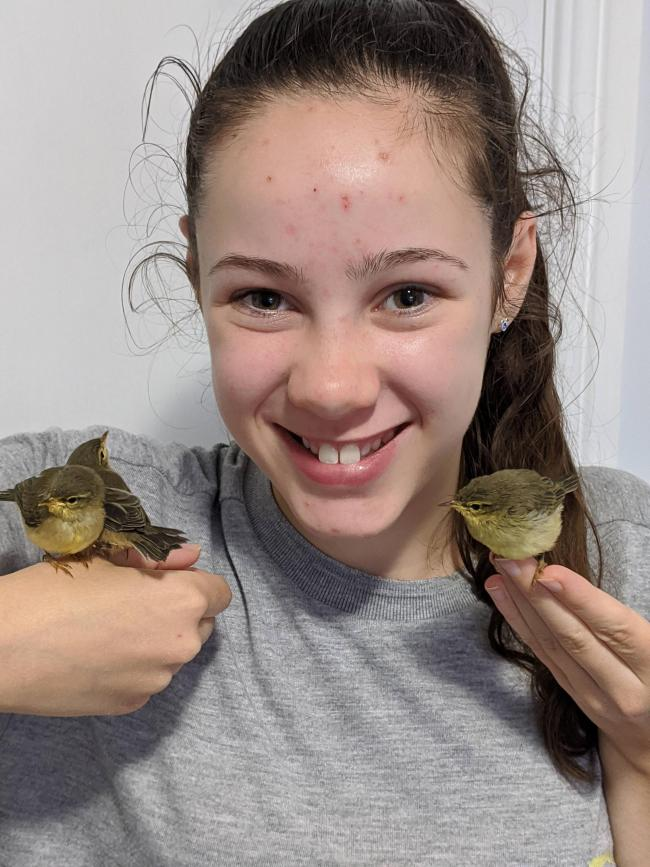 The rescued chiffchaffs that were nursed back to life by sisters Emma Farrow, her sister Bethany, pictured, and their friend, Imogen Laws