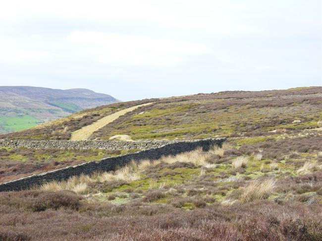P 8/5/04  The landscape of Bilsdale, North York Moors. Country Walks..