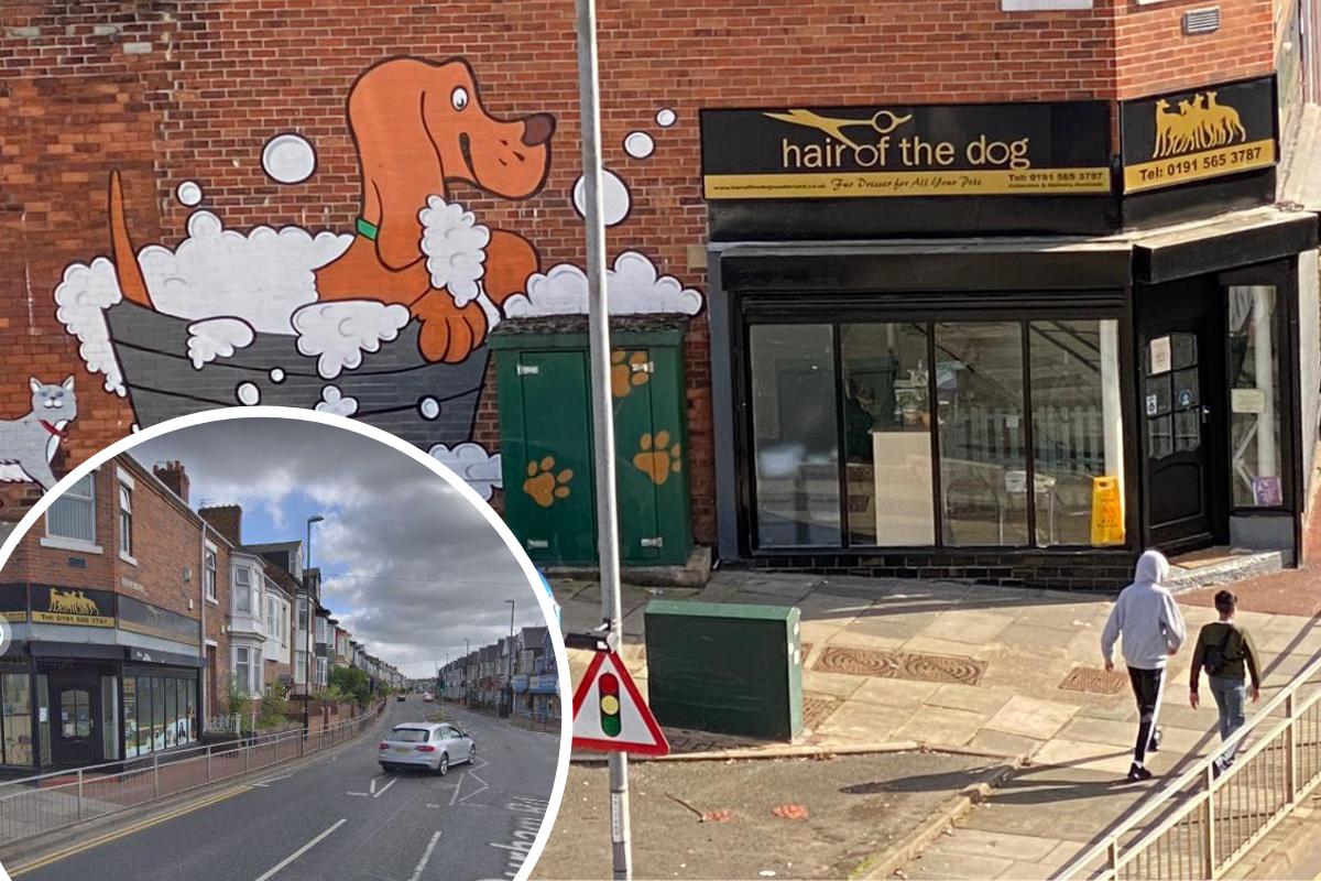 Dog salon told to obtain planning permission after 'eyesore' artwork slammed