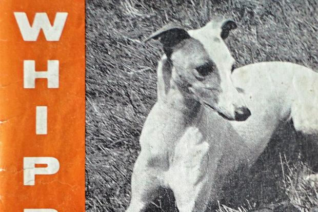 Whippet News magazine from 1969