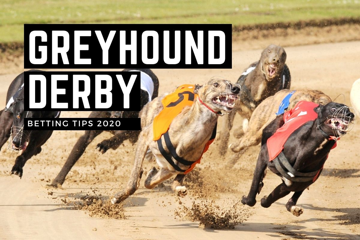 Ante post betting irish greyhound derby online betting sites with paypal