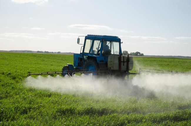 Tractor spray fertilize field with insecticide herbicide chemicals in agriculture field and evening sunlight..