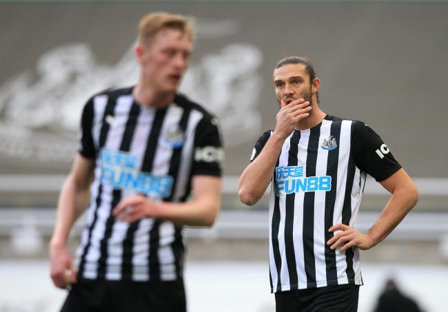 Newcastle United striker Andy Carroll displays his concern during last weekend's 2-0 home defeat at the hands of Chelsea