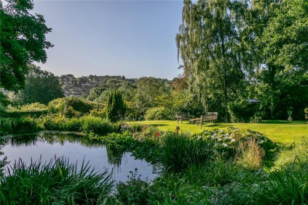 The Northern Echo: The pond. Picture: Savills