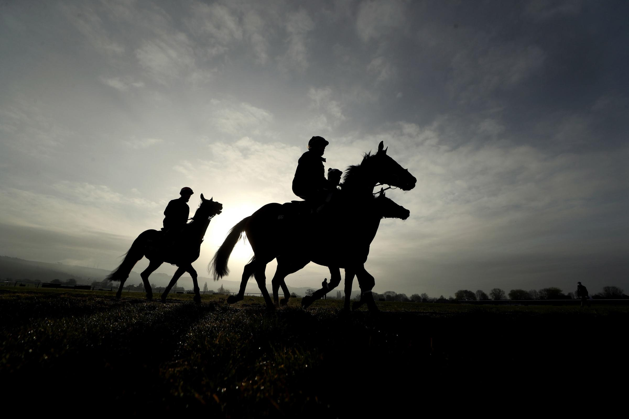 Horses trained by Henry de Bromhead on the gallops ahead of day three of the Cheltenham Festival at Cheltenham Racecourse Picture: DAVID DAVIES/JOCKEY CLUB