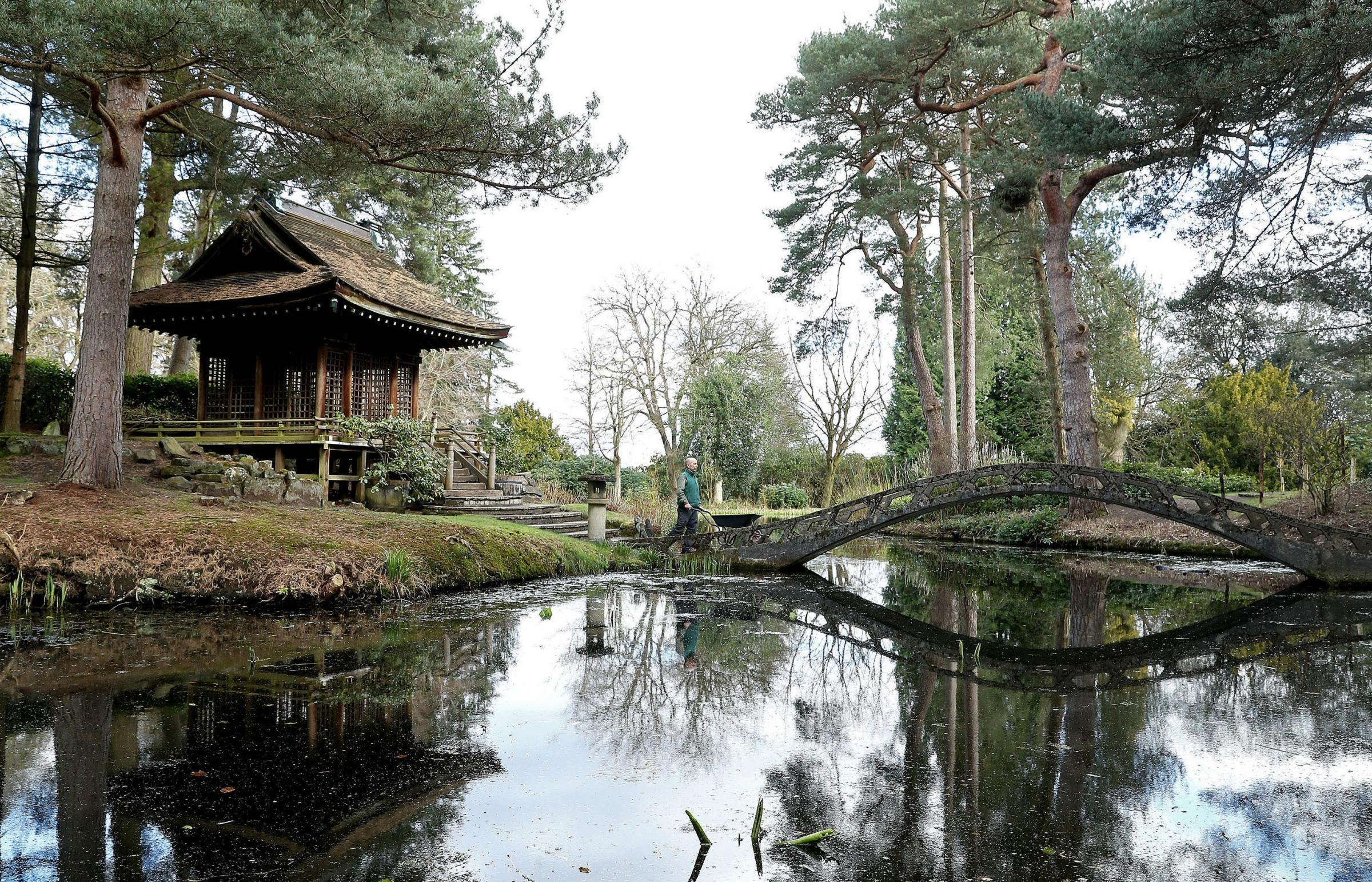 Head gardener Simon Tetlow stands in the Japanese Garden as he prepares for the return of visitors to Tatton Garden's, Tatton Park in Knutsford, Cheshire, which will reopen when further coronavirus lockdown restrictions are eased in England next
