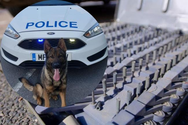 Banned driver hit police dog during high-speed chase