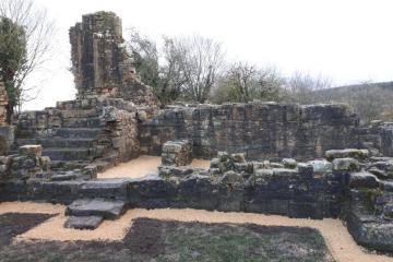 Online talk about restoration of ruins of medieval manor