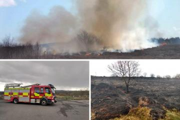 County Durham: Plea to parents as fire 'started by youths' causes destruction at Waldridge Fell