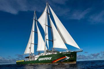 Greenpeace campaign yacht sailing into Sunderland