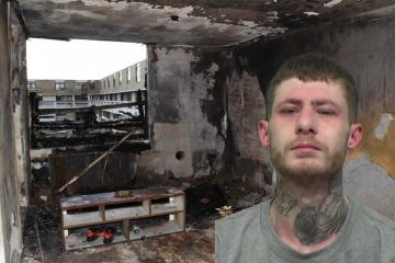 Arsonist set fire to rental flat belonging to NHS doctor