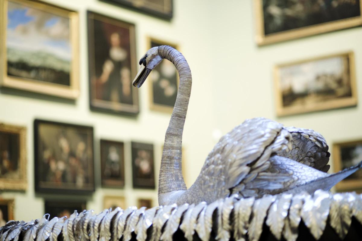A week to save museum's iconic Silver Swan - here's how you can get involved