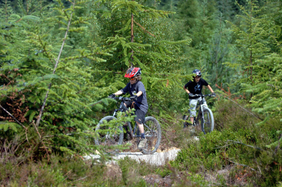 UNDER THREAT? Youngsters on the Dalby Forest mountain bike trail