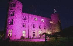 Spirit of romance: Walworth Castle, near Darlington, is lit up with pink lighting to mark Valentines' Day