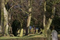 PLANS DEBATED: The graveyard at Witton-le-Wear, where Muslims may be buried in a section set aside in the grounds