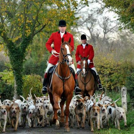 FIRST OF THE SEASON: The Zetland Hunt gathers in Headlam, County Durham, on Saturday, for the seventh meeting since the fox hunting ban came into force in 2005.