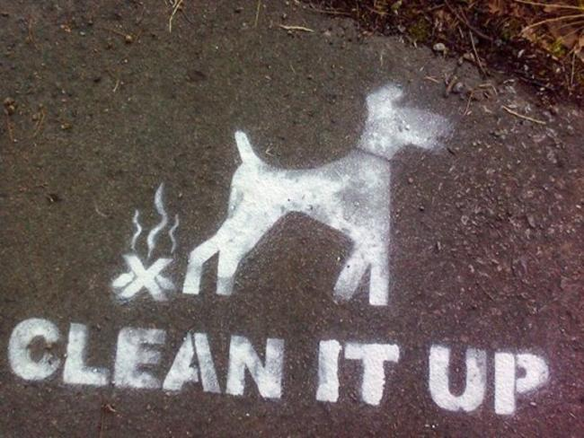 warning letters have been issued for dog fouling