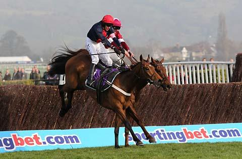 The Northern Echo: Bobs Worth is ridden by Geraghty ahead of First Lieutenant on the way to winning the RSA Chase