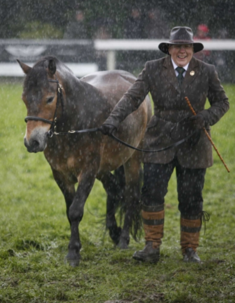 Rain puts paid to Great Yorkshire Show