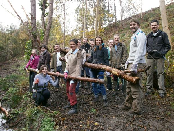Legal staff help charity restore ancient woodland