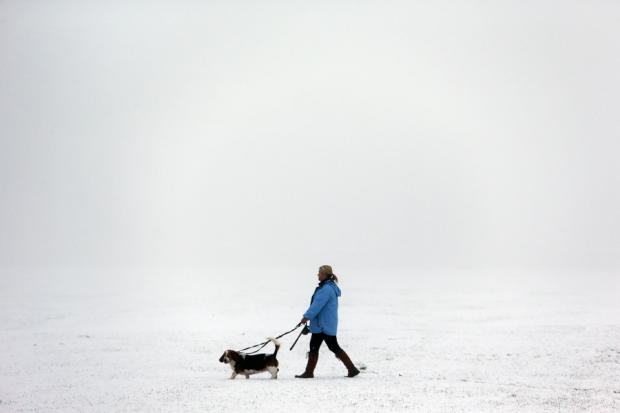 WALKIES WEATHER: A dog owner defies the wintry weather in the South Park