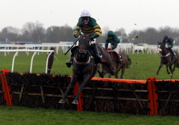 FATAL FALL: Darlan, under Tony McCoy, winning the Christmas Hurdle on Boxing Day at Kempton Park