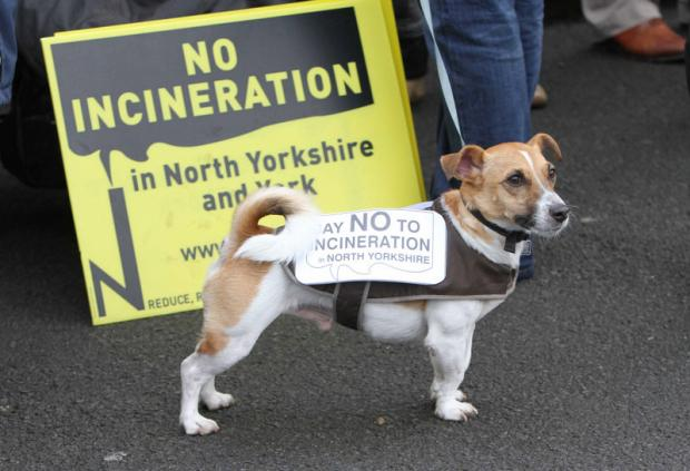 FIGHT GOES ON: Dexter the dog at one of the protests against the plan