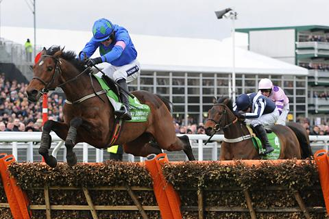 RETURNING CHAMPION: Hurricane Fly will attempt to defend his Champions Hurdle crown on the opening day of this year's Cheltenham Festival