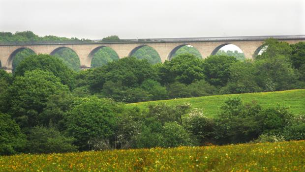The Northern Echo: DEATH SPOT: Hownsgill Viaduct