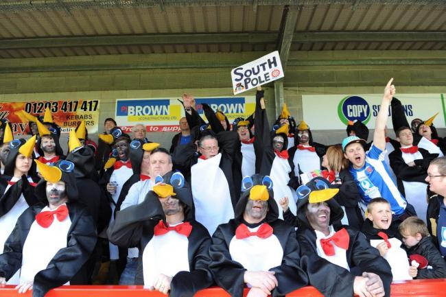 MIGRATING SOUTH: Hartlepool fans in the penguin outfits which they wore on Saturday to see their team end their days in League One with a draw at Crawley