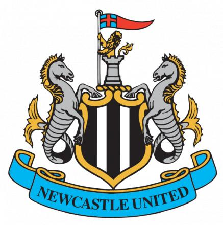 Newcastle reserves reach cup final