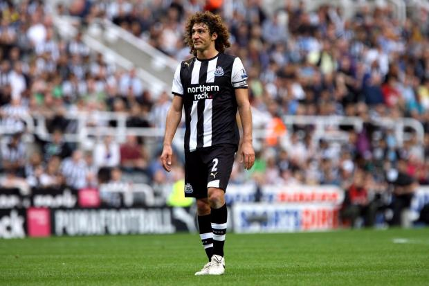 NO PANIC: Newcastle will be signing a centre-half in January despite Fabricio Coloccini facing more than a month on the sidelines