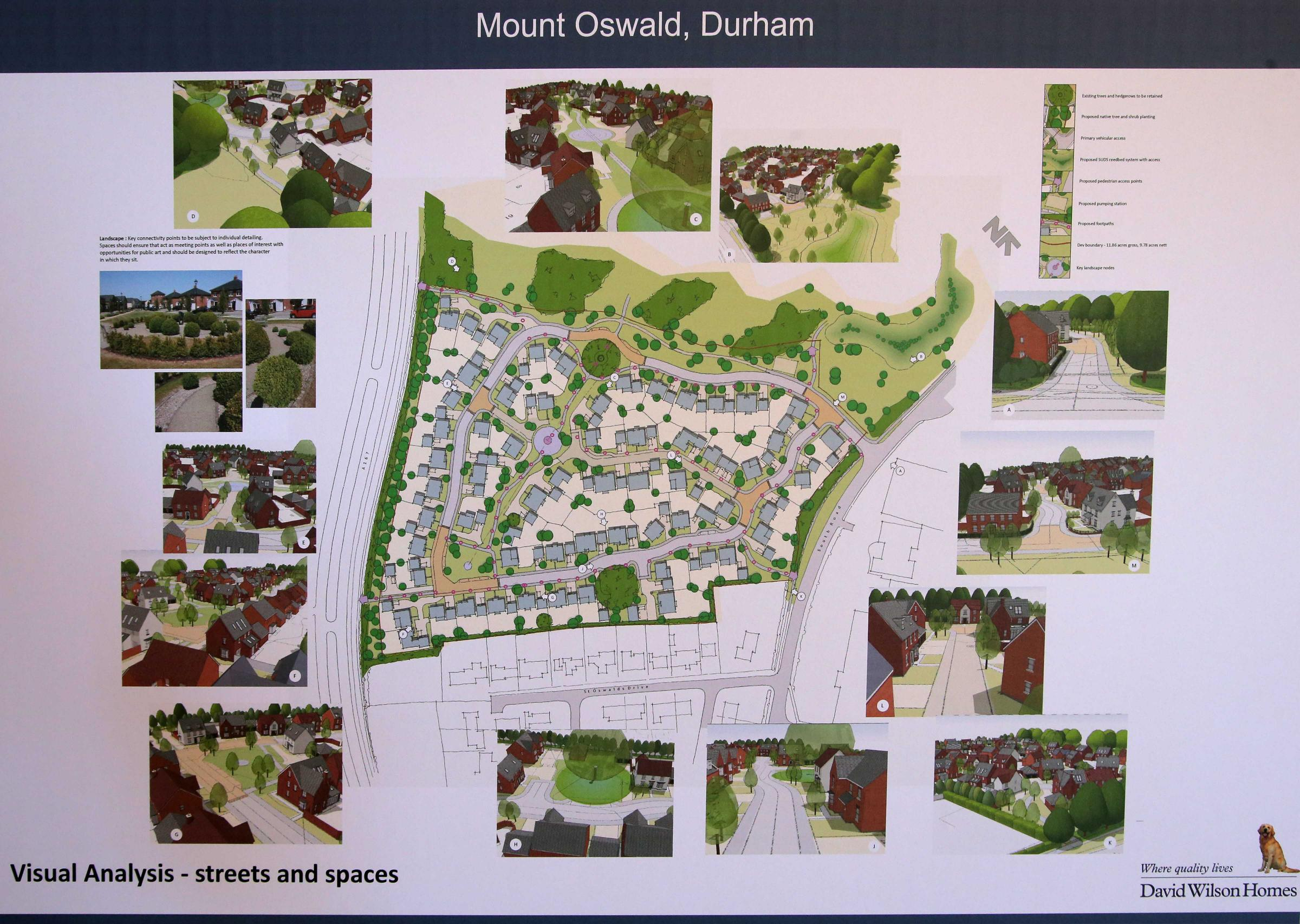 The plans for housing at Mount Oswald