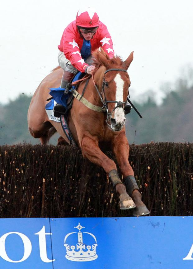 The Northern Echo: Sire De Grugy and Jamie Moore clear the last fence