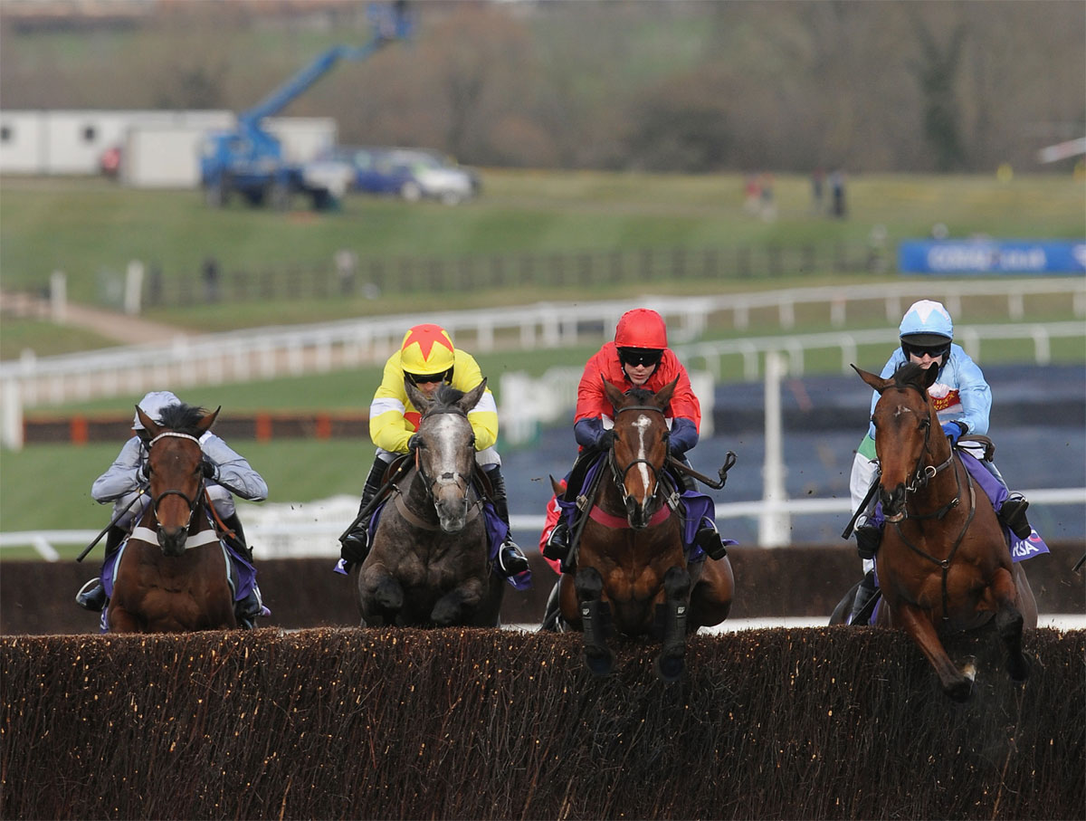 HIGH HOPES: Unioniste, centre, is set for the Sky Bet Chase at Doncaster