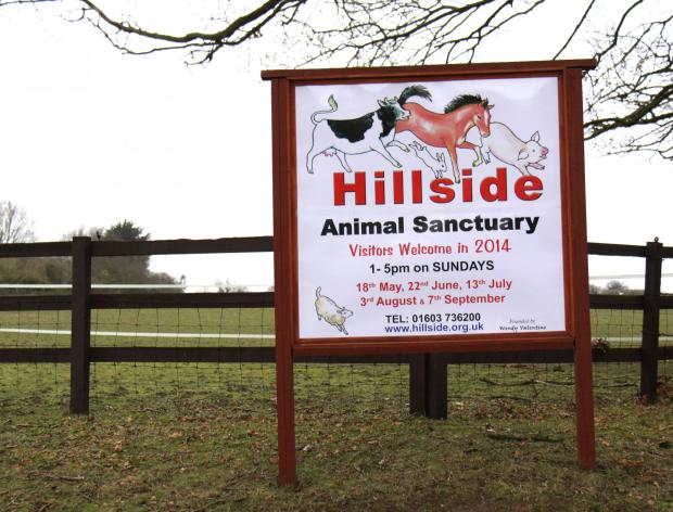 NEW HOME: A sanctuary in Norfolk has come forward to rehome stranded animals