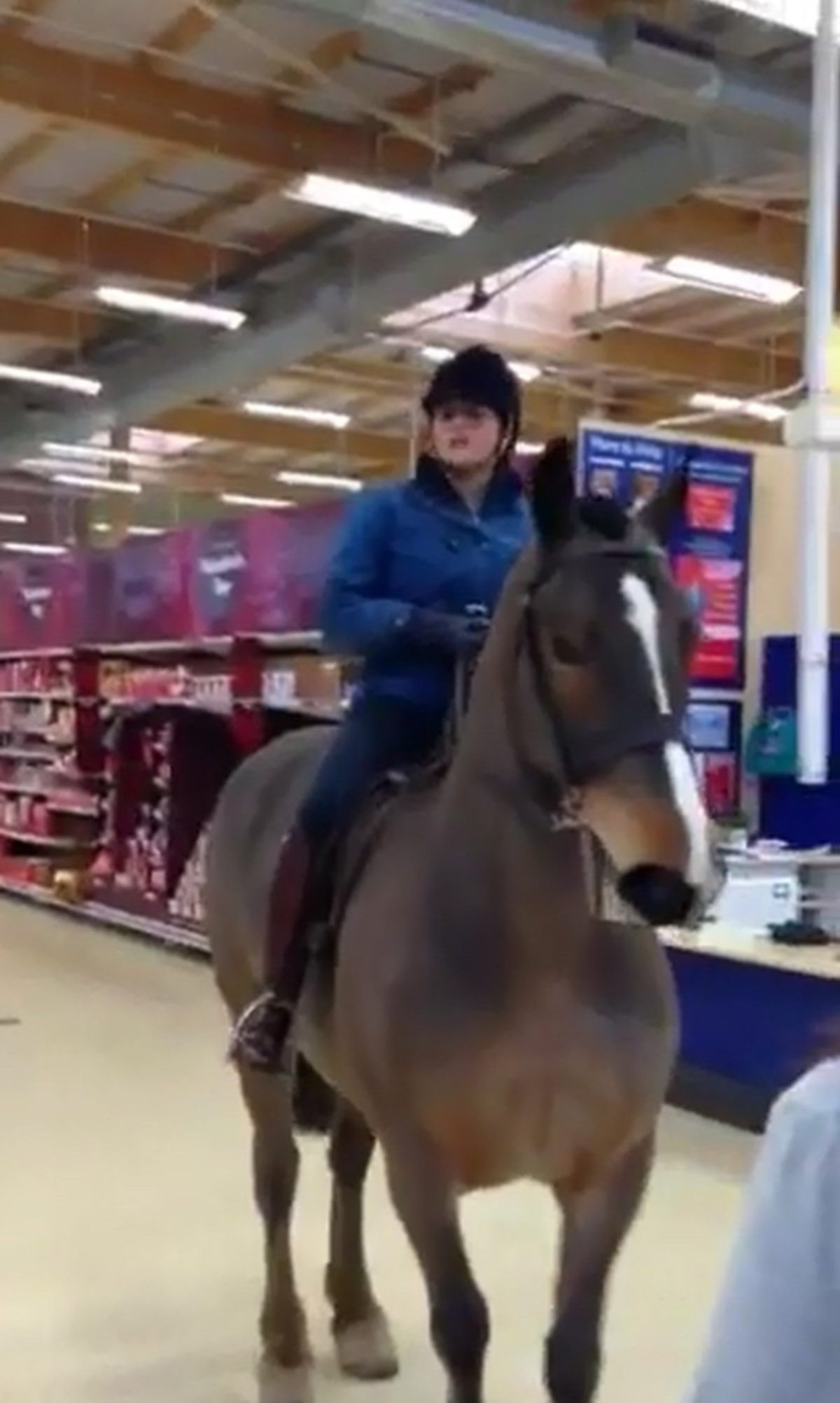 Concerns raised over dangers of NekNominations after woman rides horse into Tesco in Bishop Auckland