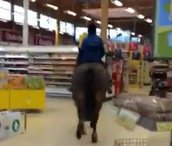 HORSE STUNT: Inky Ralph, from Bishop Auckland, with her horse Harvey in Tesco