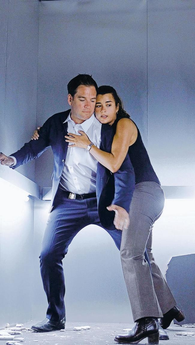 are michael weatherly and cote de pablo dating in real life