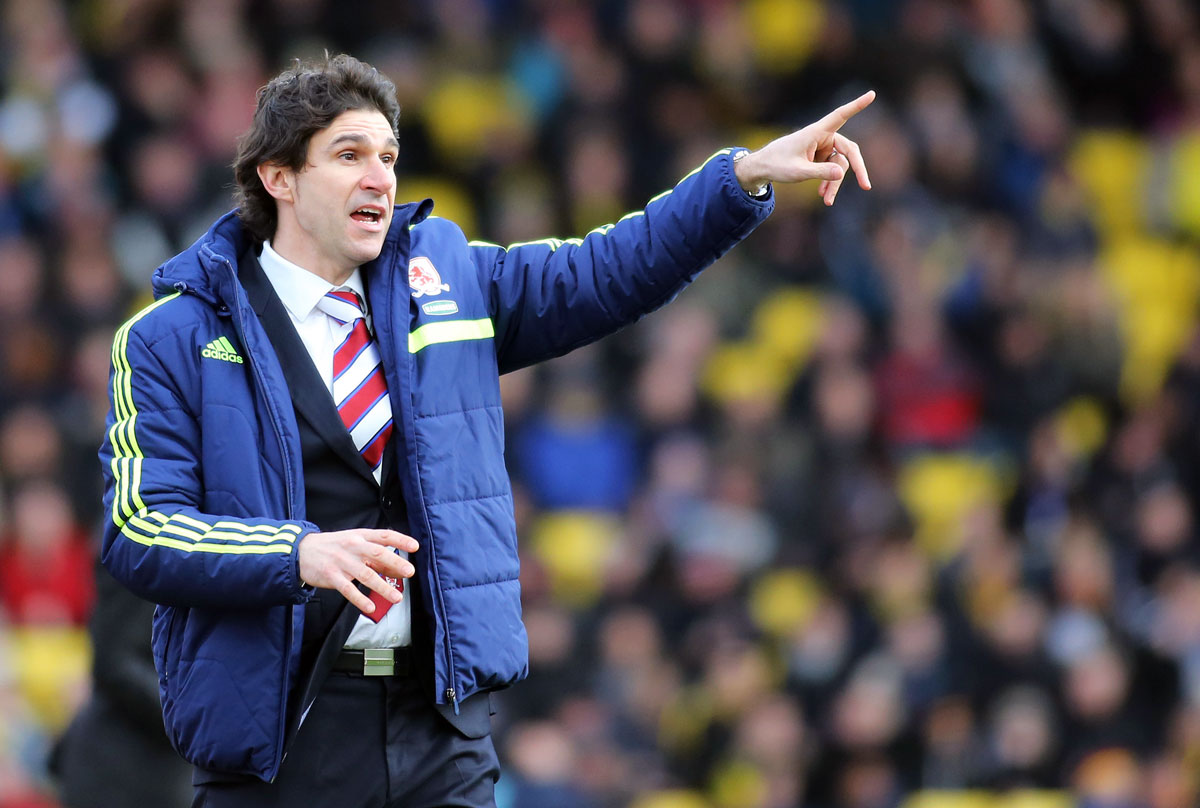 RIGHT DIRECTION: Aitor Karanka feels Middlesbrough have made progress since his first game at Leeds